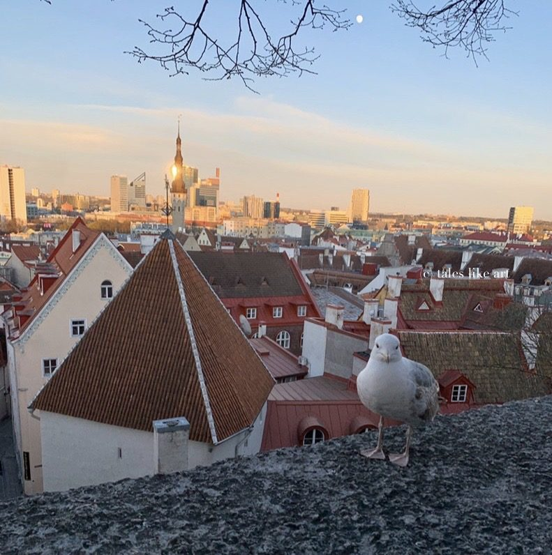 Tallinn Old Town View from above